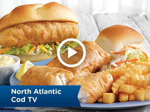 North Atlantic Cod TV