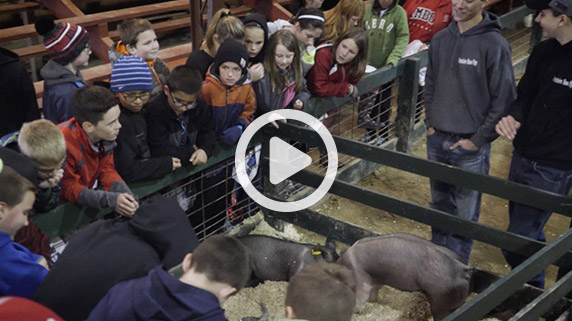 Take a look at 2017's Lee County Ag Expo